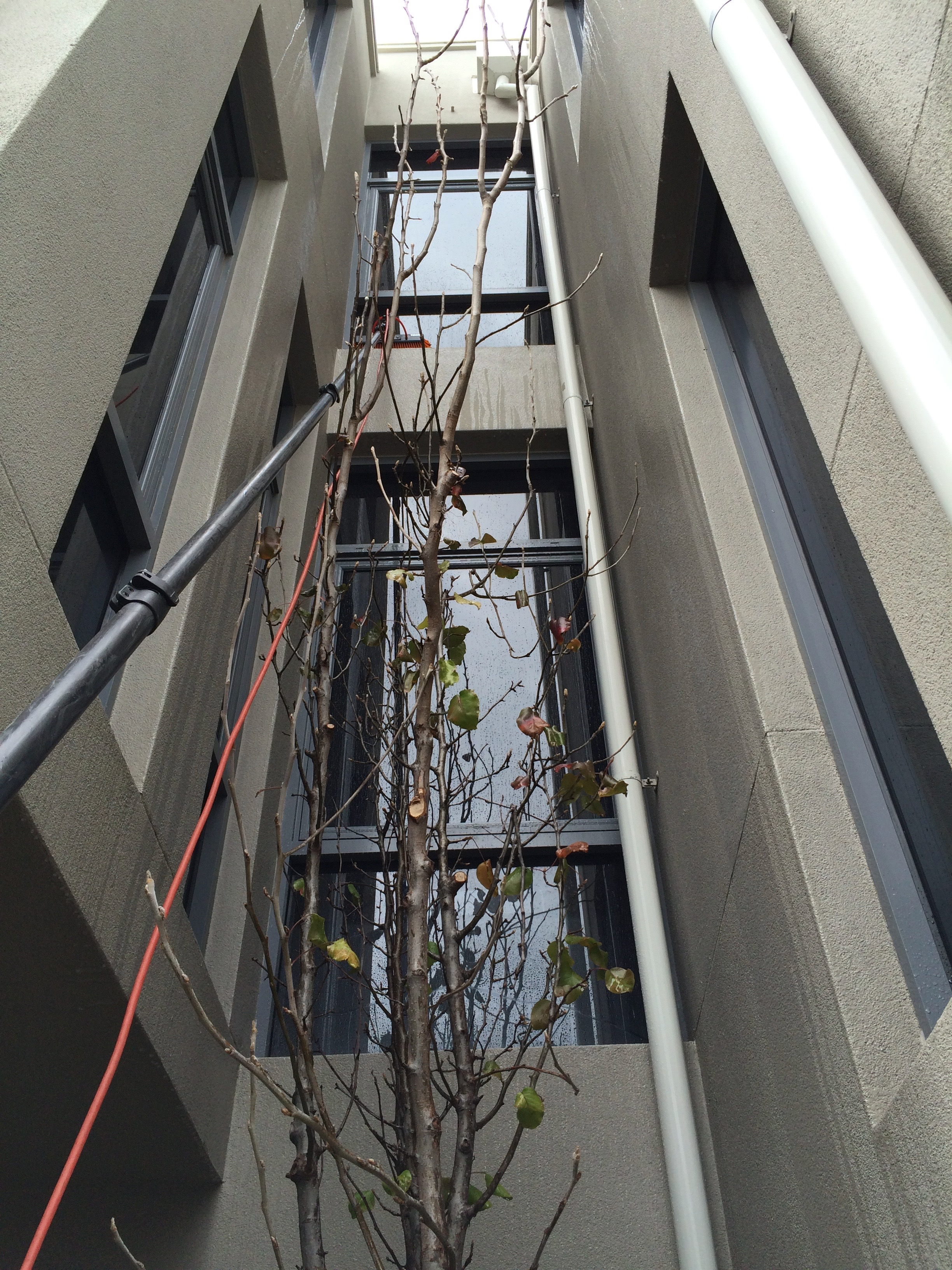 Water Fed Pole Cleaning Services Perth Wa Hypacleen